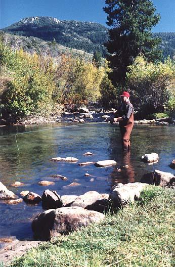 Fly fishing for Beaver creek fly fishing